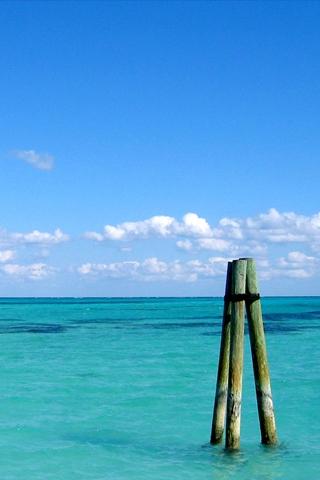 Tropical Waters iPhone Wallpaper