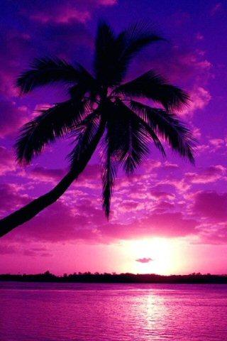 Purple Sunset iPhone Wallpaper | iDesign iPhone